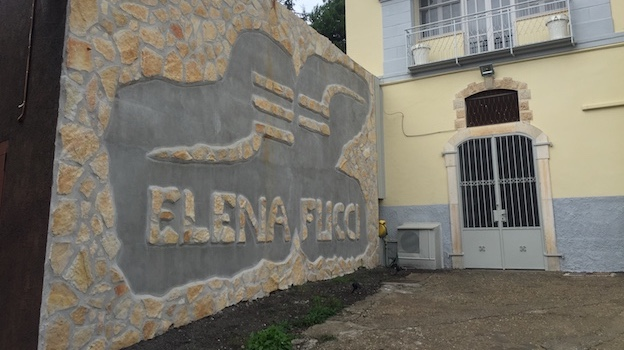 Elena Fucci WInery