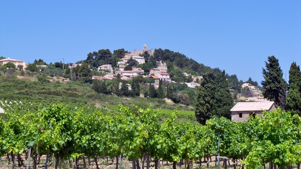 Rasteau Vineyards